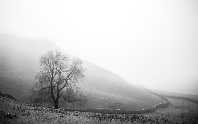 Black and Whites Landscape Fine art Print