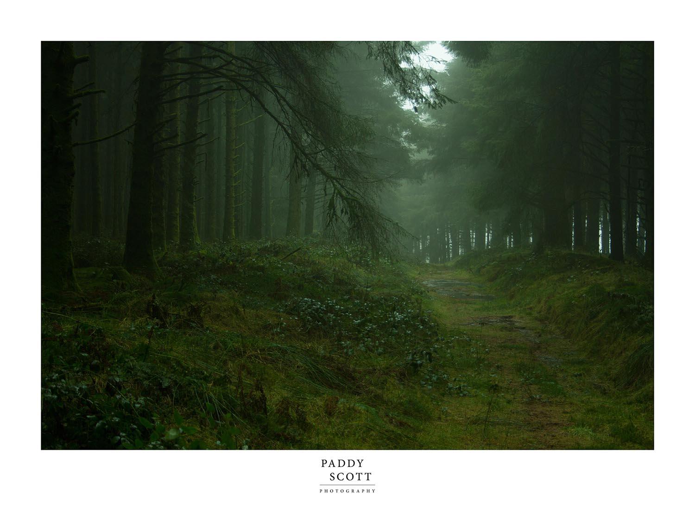 The Hidden Pathway