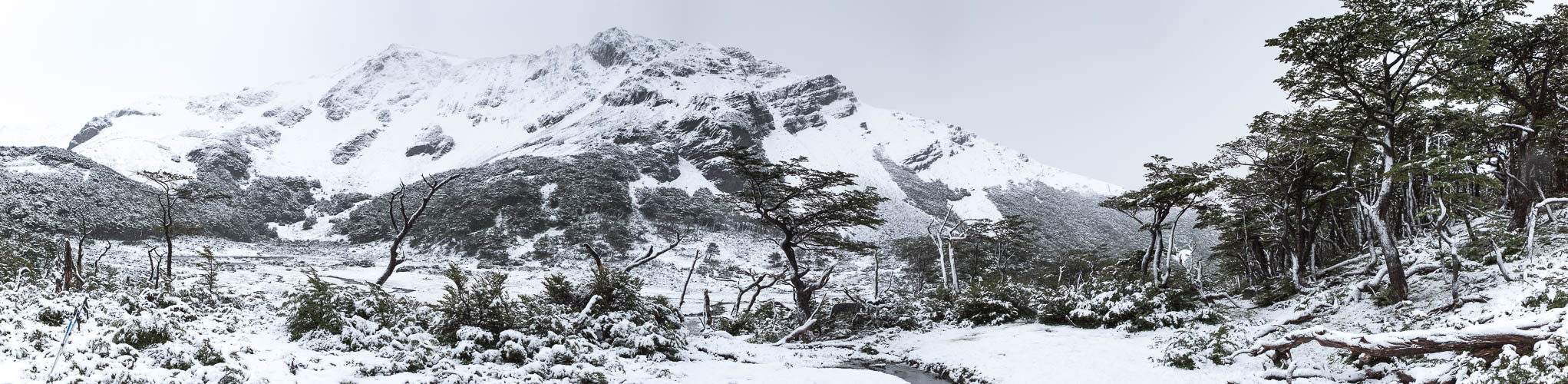 Snow on the Dientes de Navarino Trek